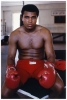 Мухаммед Али / Muhammad Ali.