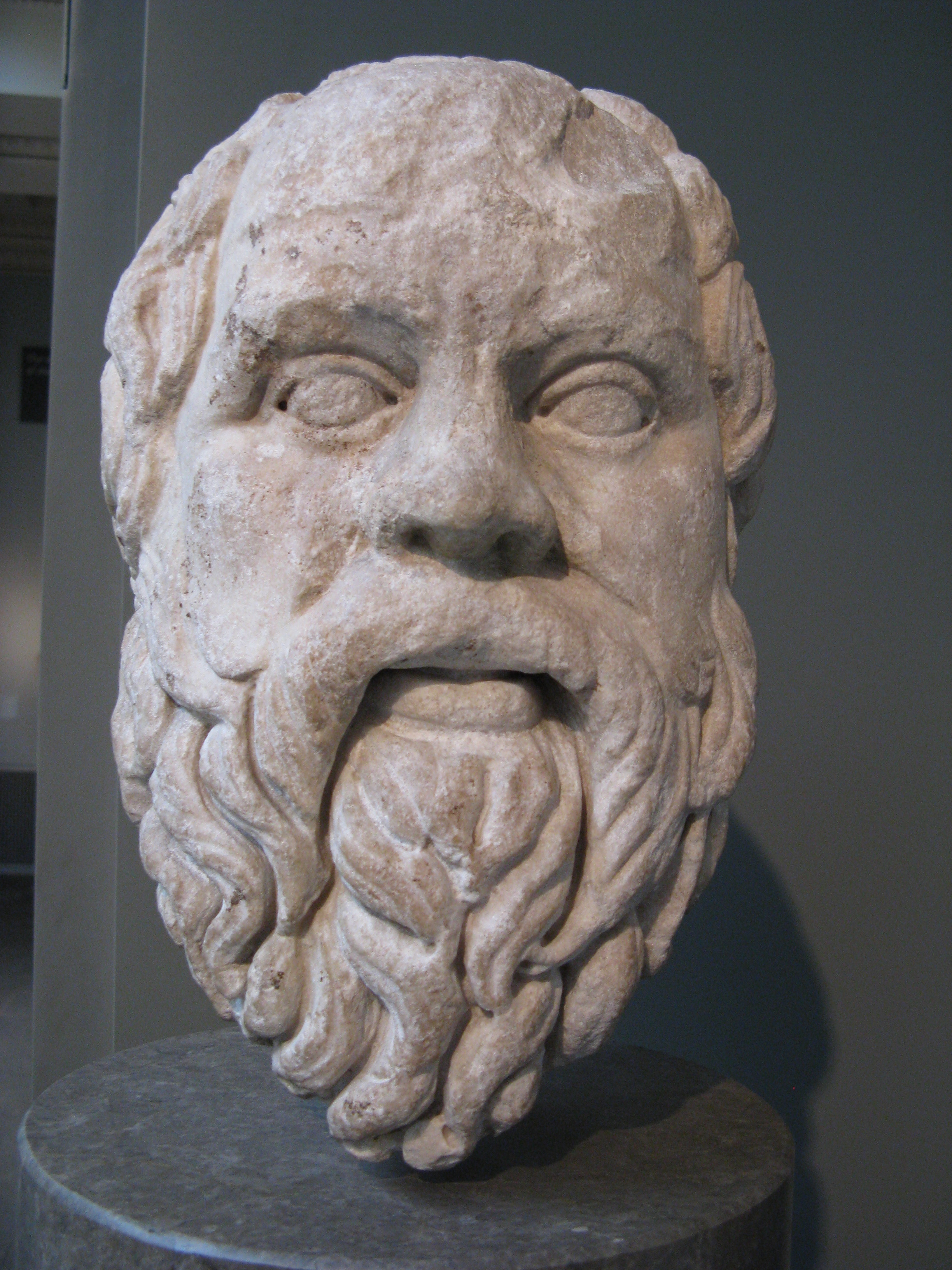 opinions on socrates Crito has mentioned that, in the opinion of many persons, both socrates and his friends will be severely criticized if he fails to make any attempt to escape from prison socrates, in reply, calls attention to the danger that is involved in following public opinion.